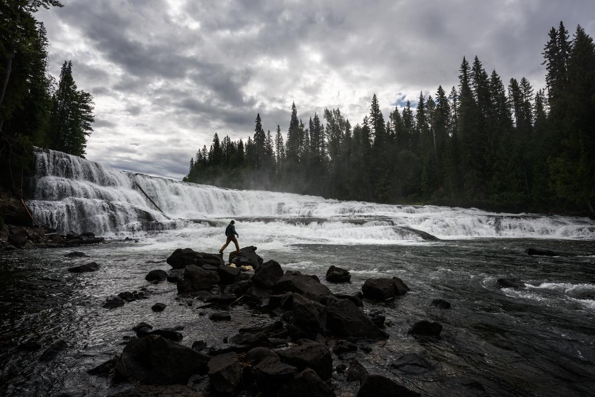 Dawson Falls / Andrew Strain